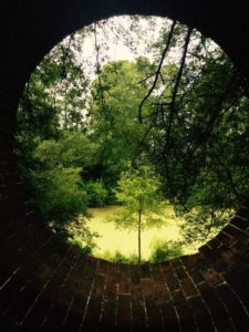 hww-circular-window-on-eden